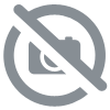 Paratrooper bag of the French army and the Foreign Legion 2REP